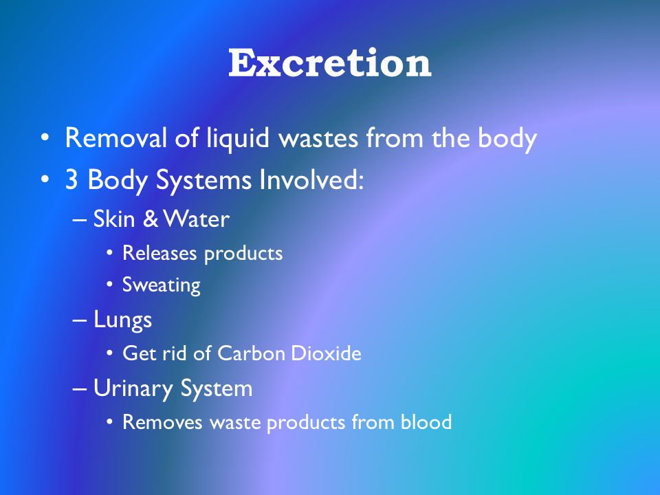 Excretion Removal of liquid wastes from the body