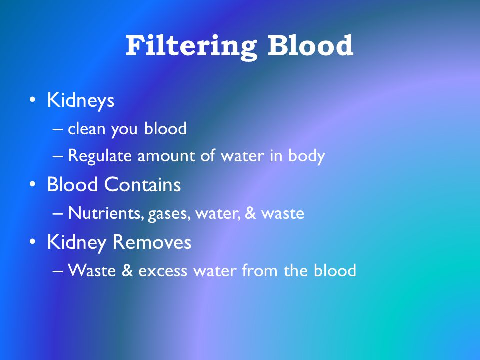 Filtering Blood Kidneys Blood Contains Kidney Removes clean you blood