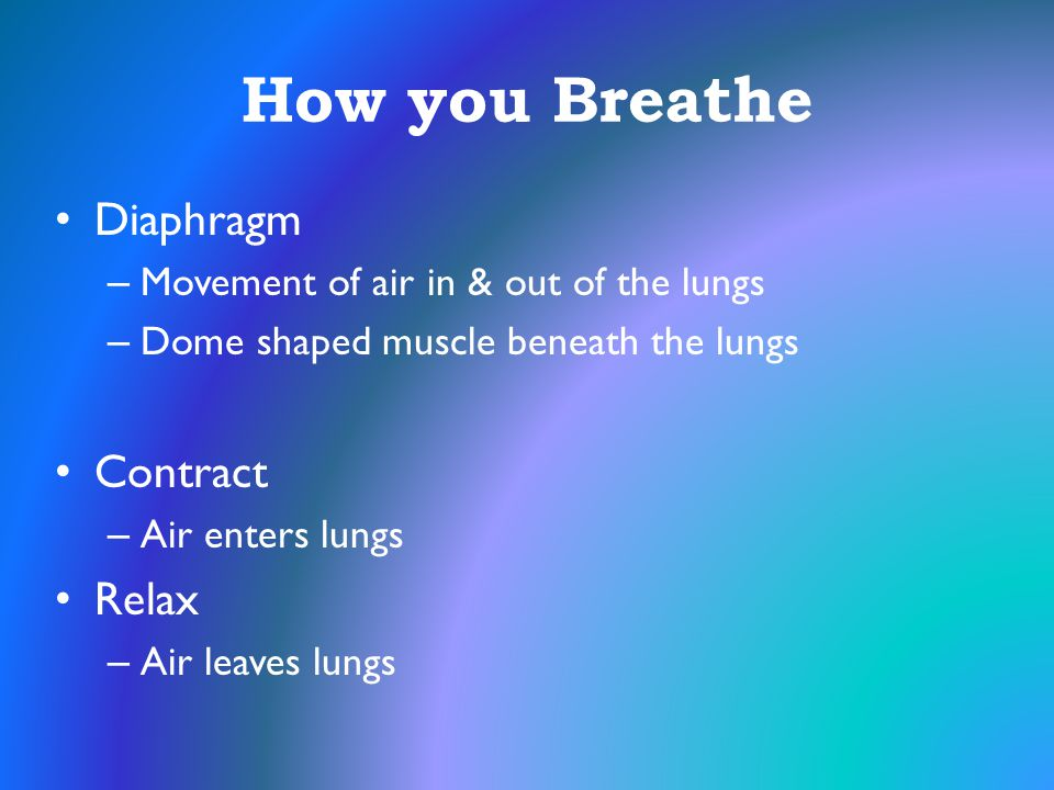 How you Breathe Diaphragm Contract Relax