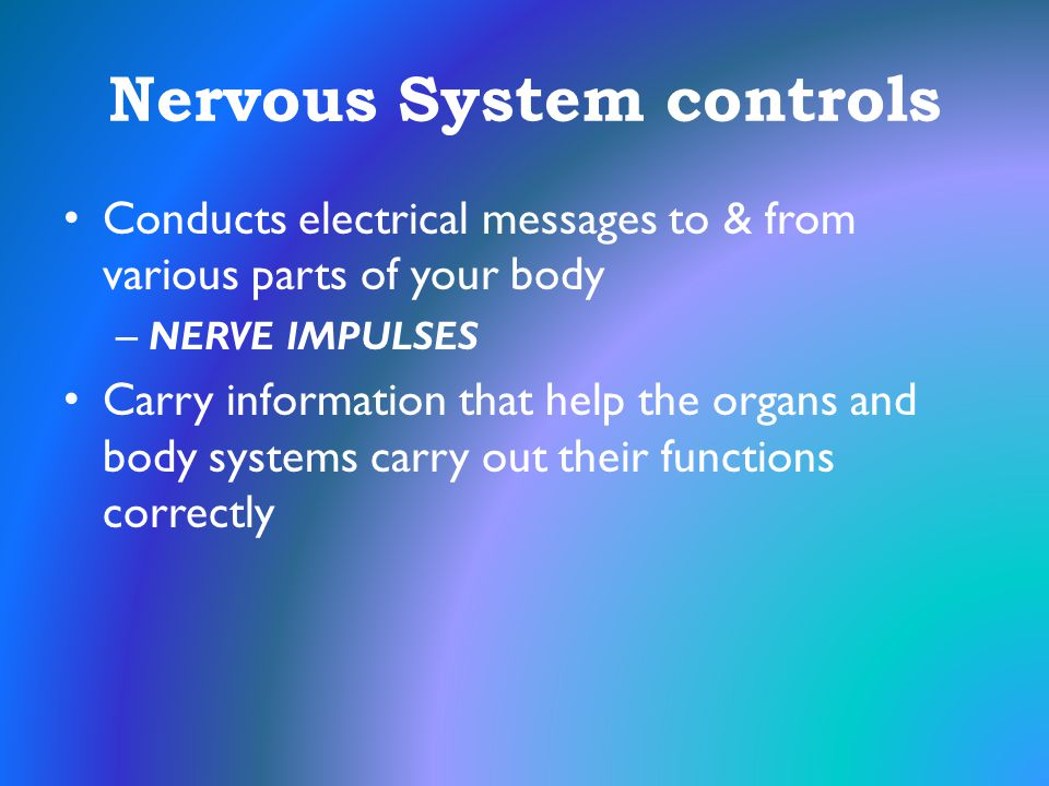 Nervous System controls