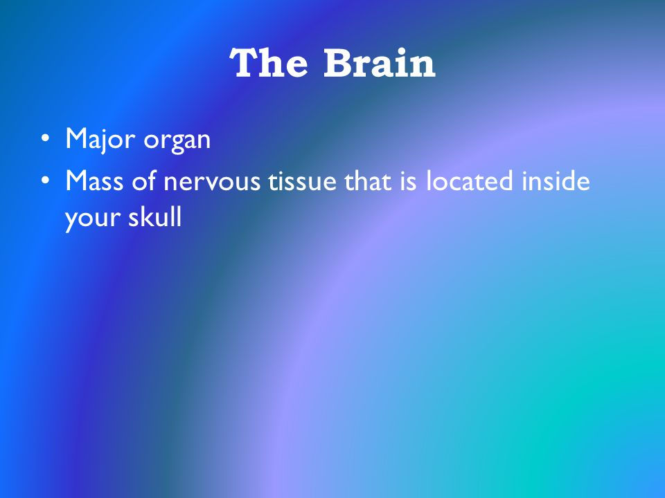 The Brain Major organ Mass of nervous tissue that is located inside your skull