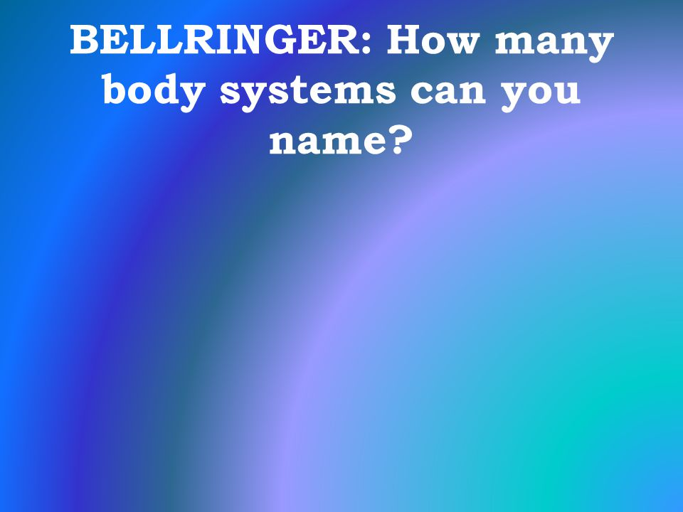 BELLRINGER: How many body systems can you name