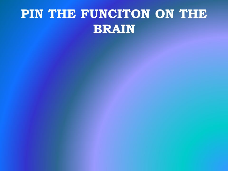 PIN THE FUNCITON ON THE BRAIN