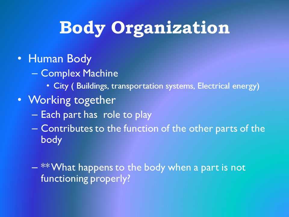 Body Organization Human Body Working together Complex Machine