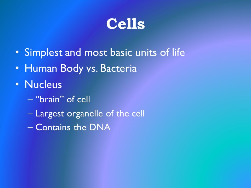 Cells Simplest and most basic units of life Human Body vs. Bacteria