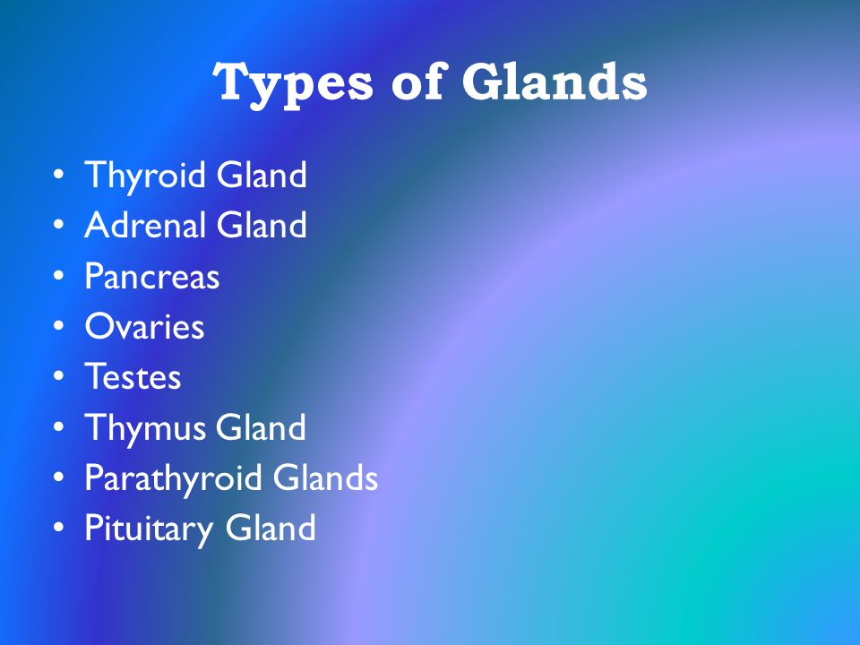 Types of Glands Thyroid Gland Adrenal Gland Pancreas Ovaries Testes
