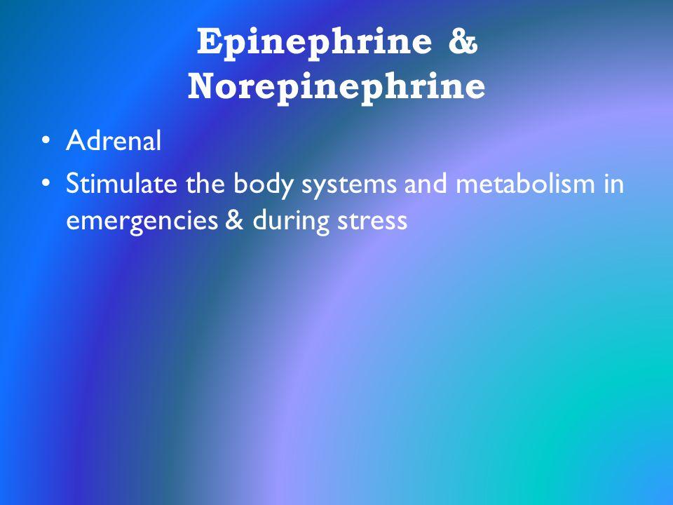 Epinephrine & Norepinephrine