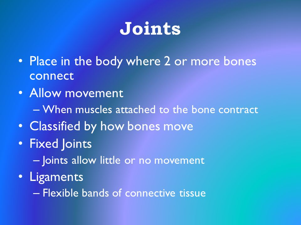 Joints Place in the body where 2 or more bones connect Allow movement
