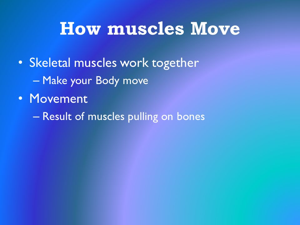 How muscles Move Skeletal muscles work together Movement