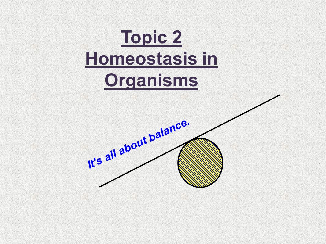 Homeostasis in Organisms