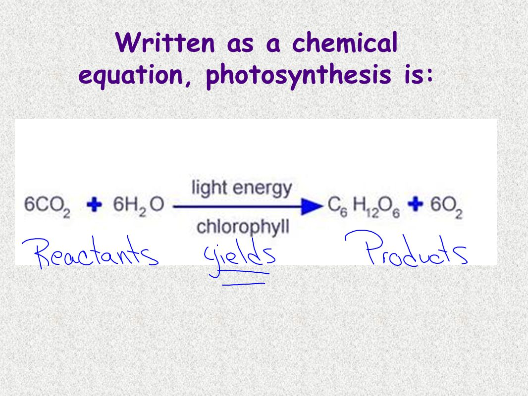 Written as a chemical equation, photosynthesis is: