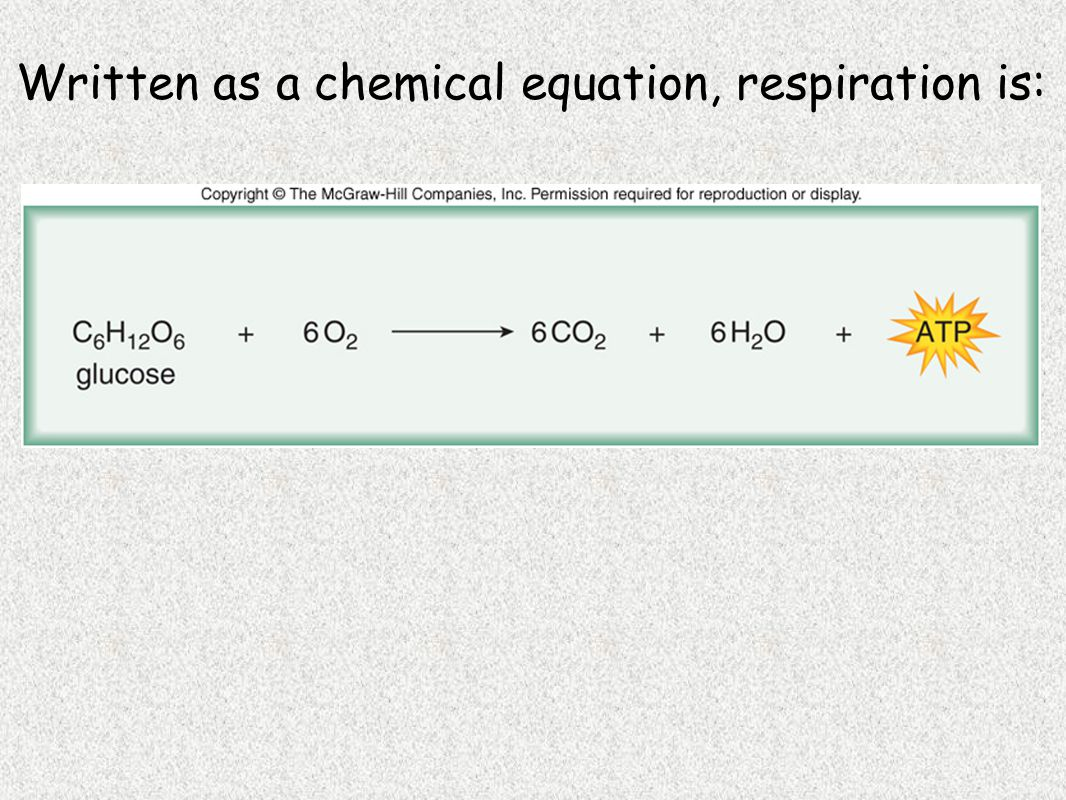 Written as a chemical equation, respiration is: