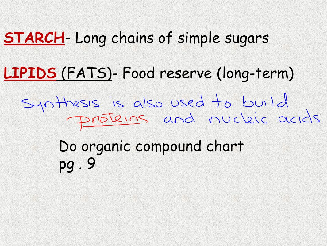 STARCH- Long chains of simple sugars