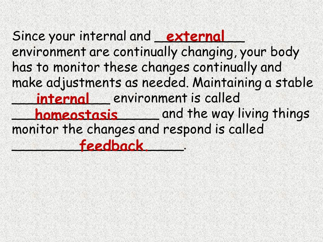external homeostasis feedback.
