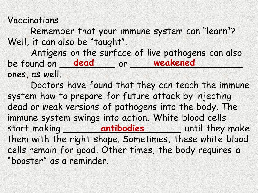 Vaccinations Remember that your immune system can learn Well, it can also be taught .