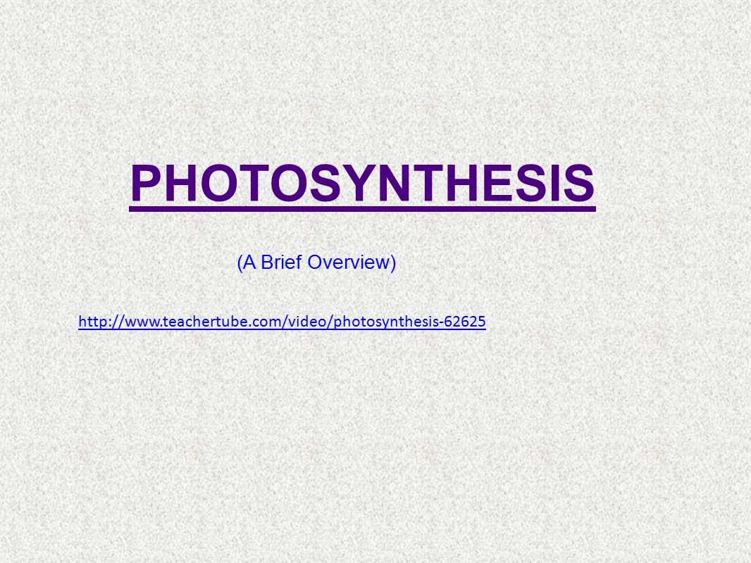 PHOTOSYNTHESIS (A Brief Overview)