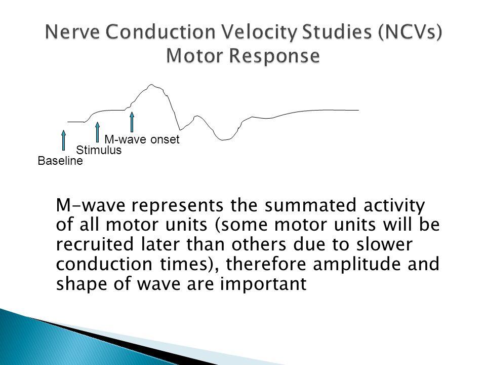 Nerve Conduction Velocity Studies (NCVs) Motor Response