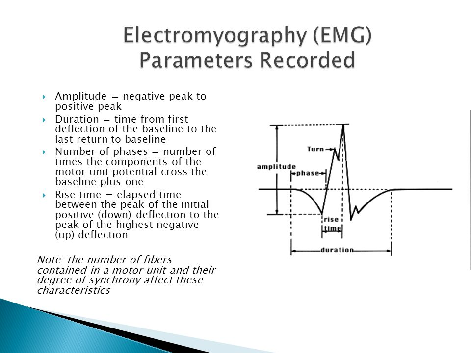 Electromyography (EMG) Parameters Recorded