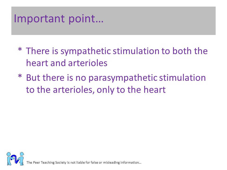Important point… There is sympathetic stimulation to both the heart and arterioles.