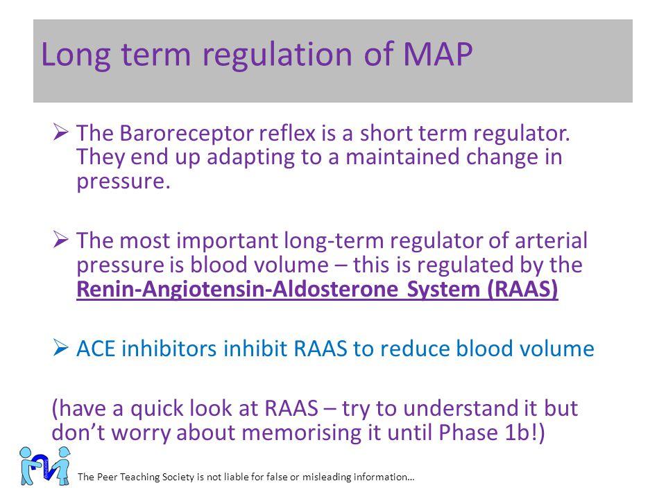 Long term regulation of MAP