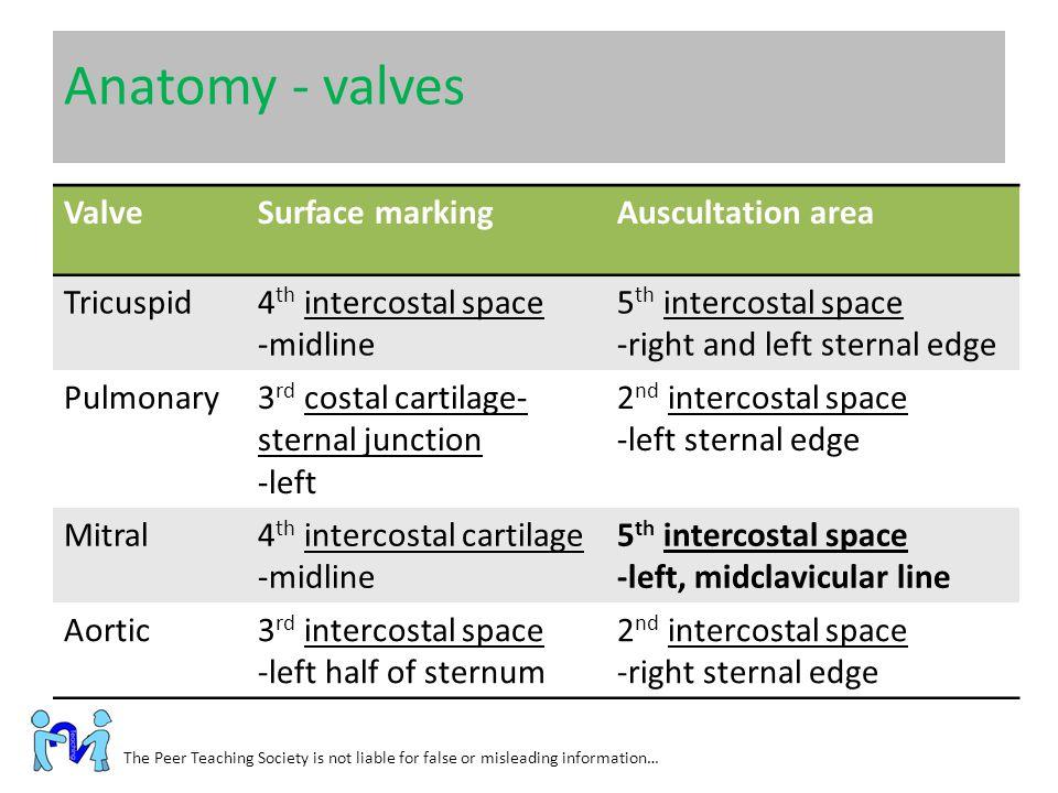 Anatomy - valves Valve Surface marking Auscultation area Tricuspid