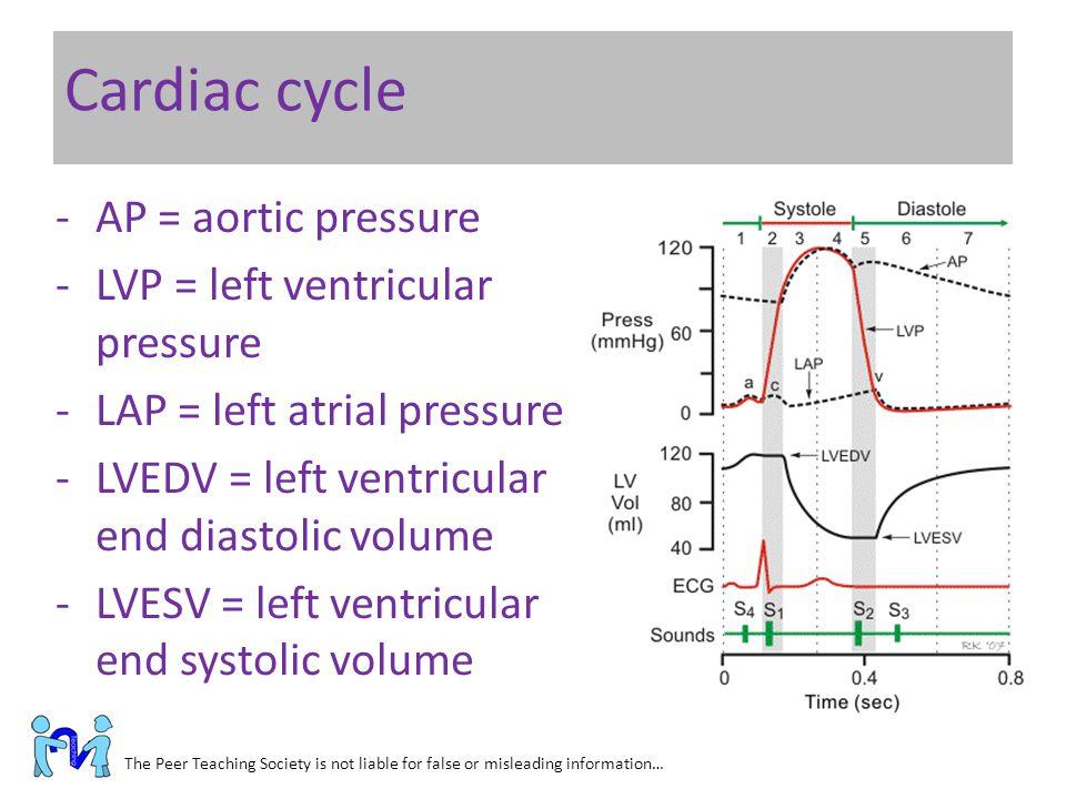 Cardiac cycle AP = aortic pressure LVP = left ventricular pressure