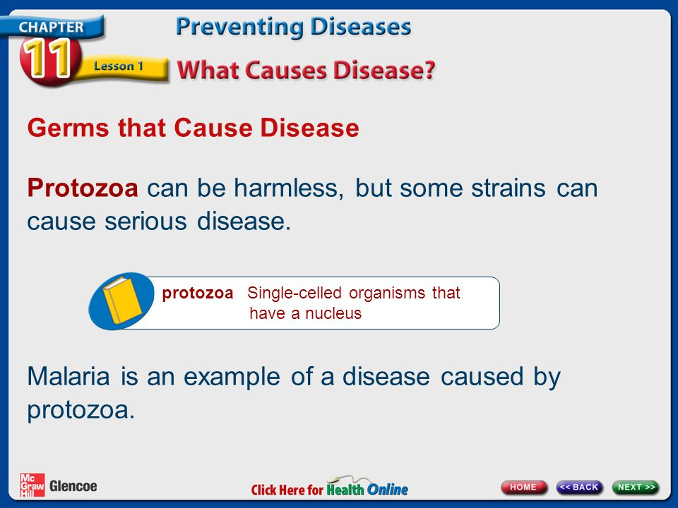 Germs that Cause Disease