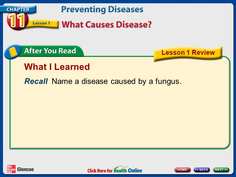 What I Learned Recall Name a disease caused by a fungus.