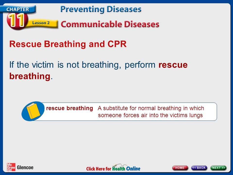 Rescue Breathing and CPR