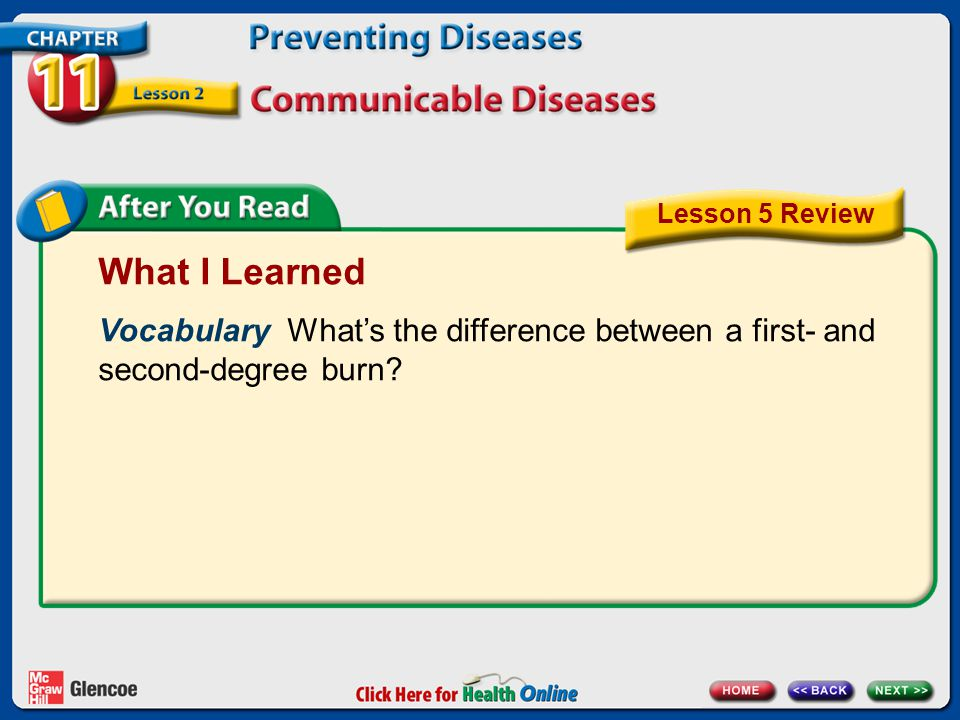Lesson 5 Review What I Learned. Vocabulary What's the difference between a first- and second-degree burn