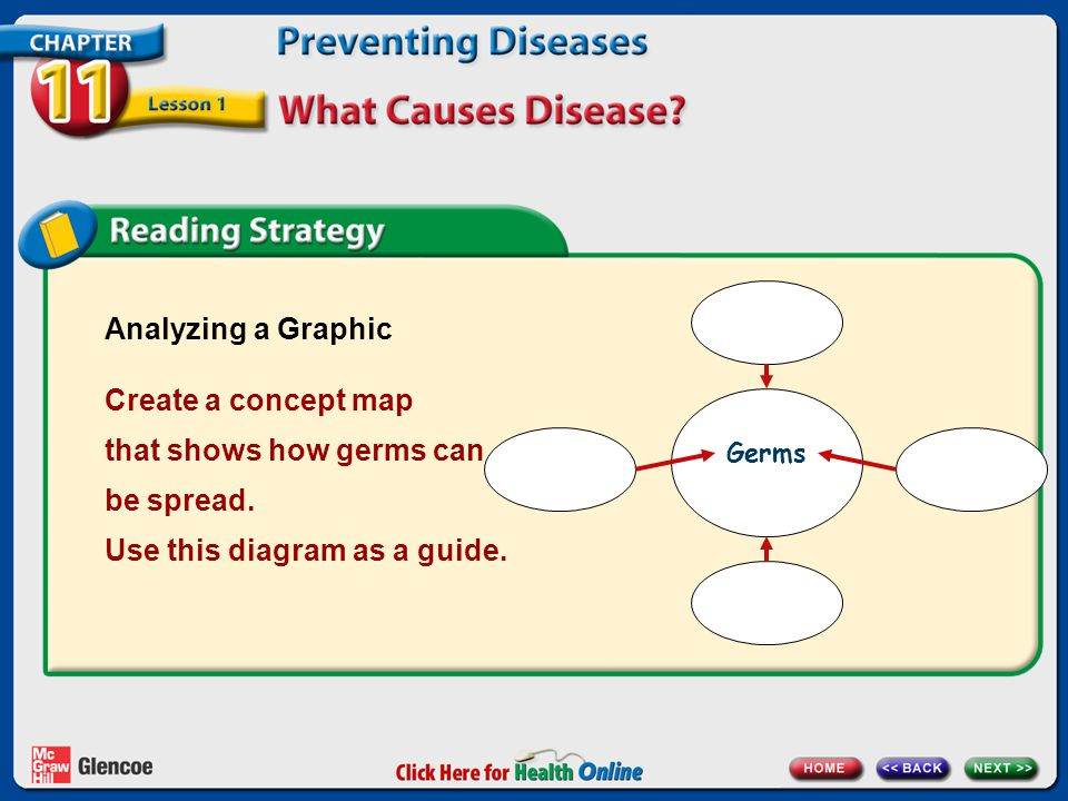 Analyzing a Graphic Create a concept map that shows how germs can be spread. Use this diagram as a guide.