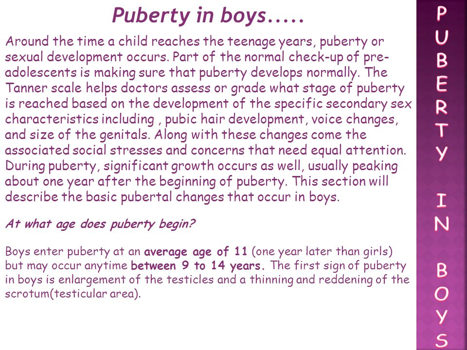 Puberty in boys..... P U B E R T Y I N O S