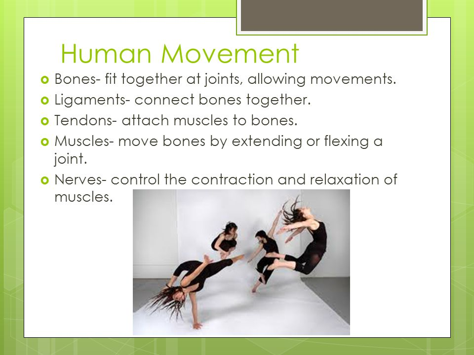 Human Movement Bones- fit together at joints, allowing movements.