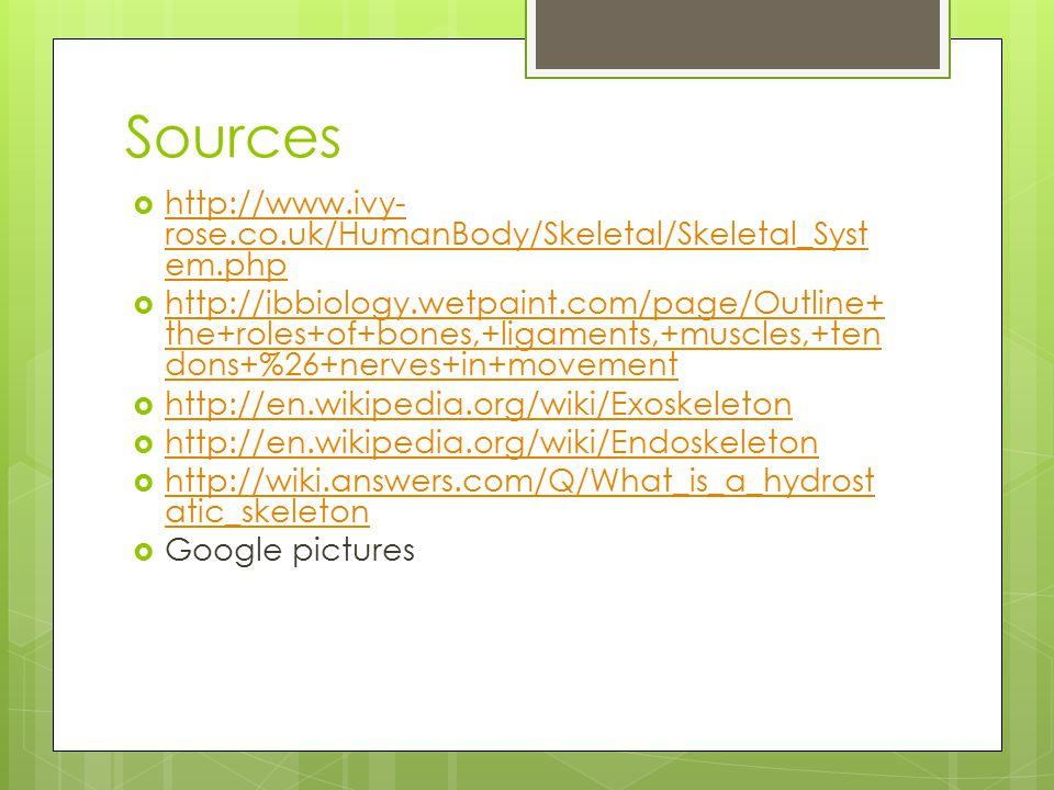 Sources http://www.ivy-rose.co.uk/HumanBody/Skeletal/Skeletal_System.php.