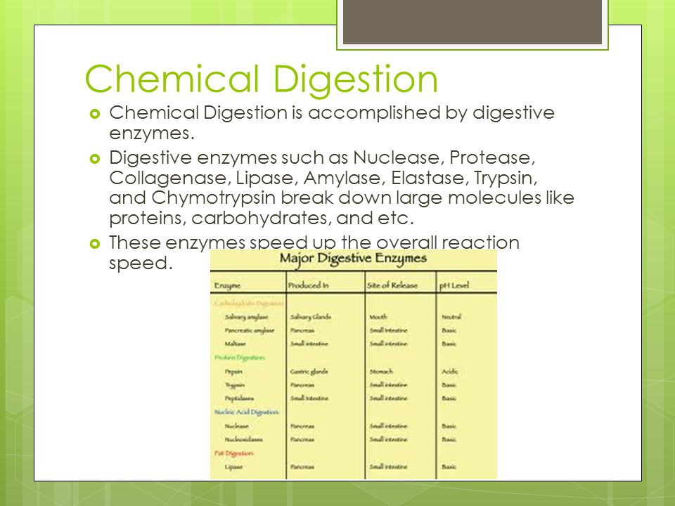 Chemical Digestion Chemical Digestion is accomplished by digestive enzymes.