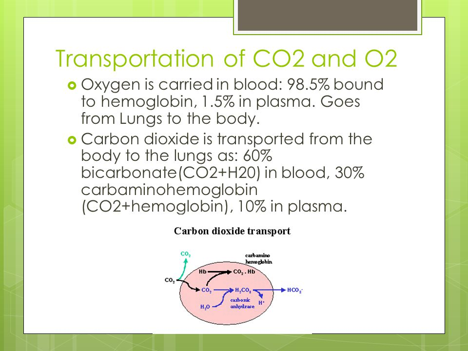 Transportation of CO2 and O2