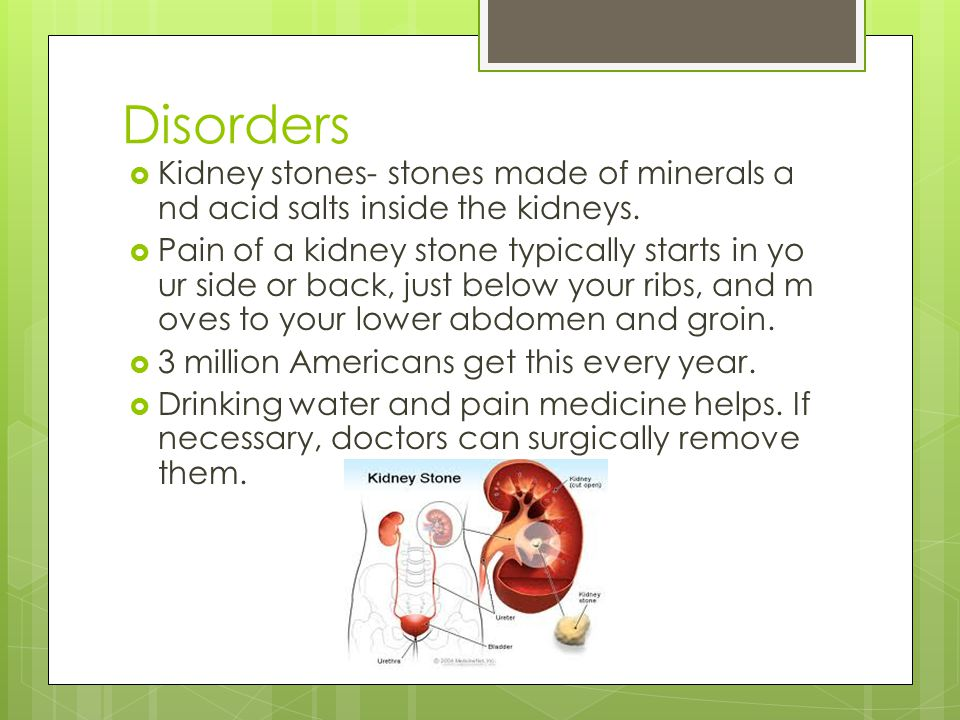 Disorders Kidney stones- stones made of minerals and acid salts inside the kidneys.