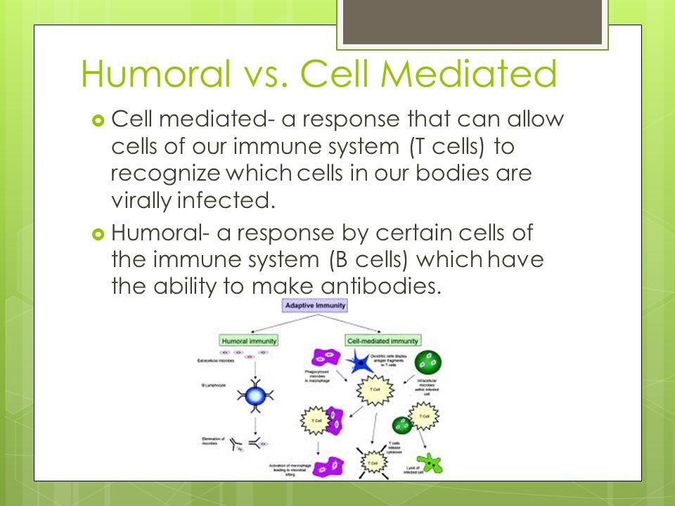 Humoral vs. Cell Mediated