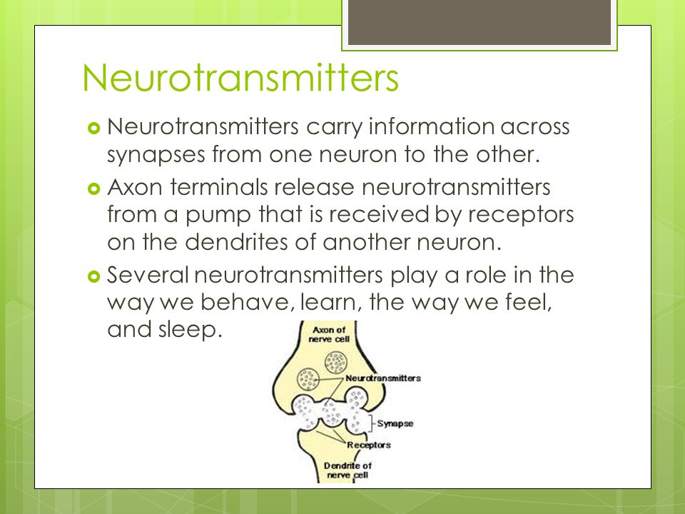 Neurotransmitters Neurotransmitters carry information across synapses from one neuron to the other.
