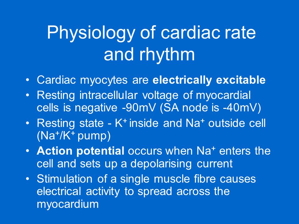 Physiology of cardiac rate and rhythm