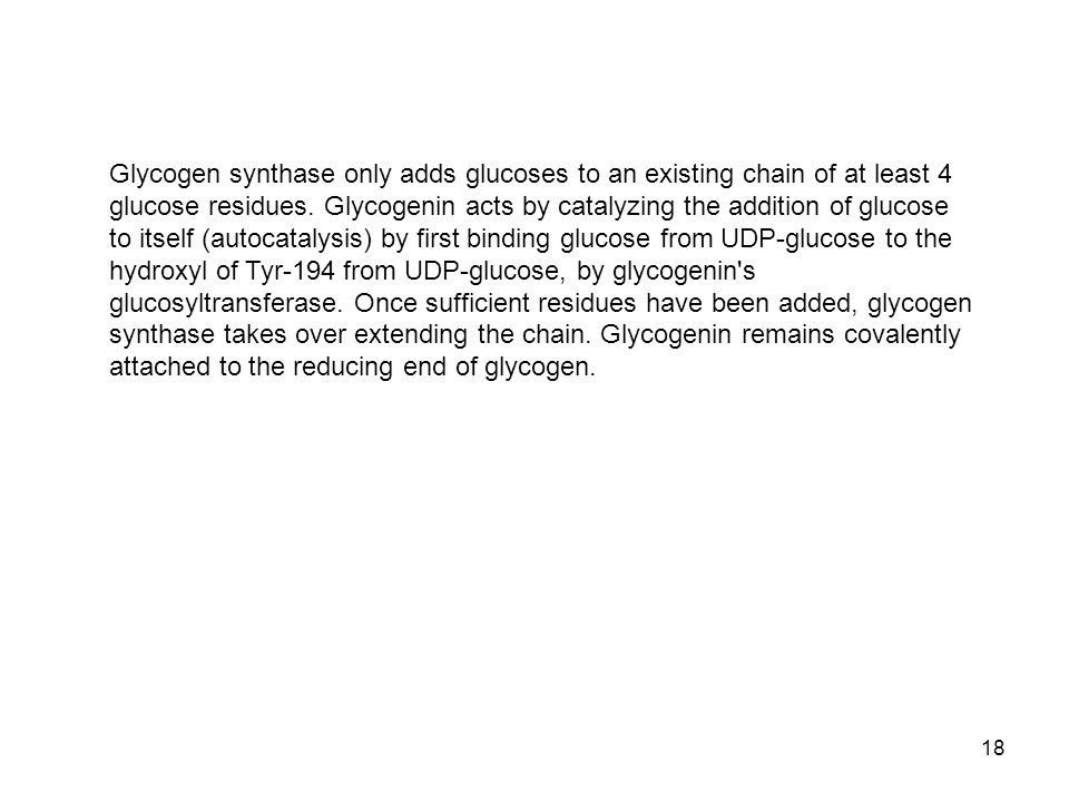 Glycogen synthase only adds glucoses to an existing chain of at least 4 glucose residues.