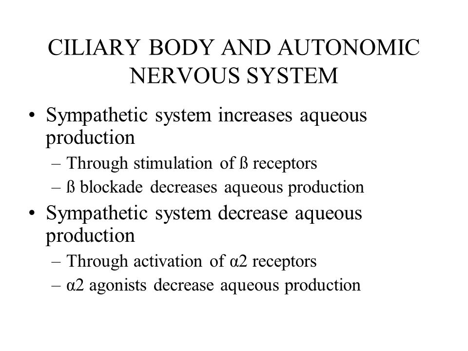 CILIARY BODY AND AUTONOMIC NERVOUS SYSTEM