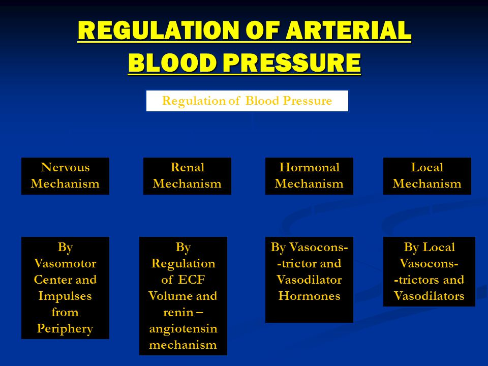 REGULATION OF ARTERIAL BLOOD PRESSURE