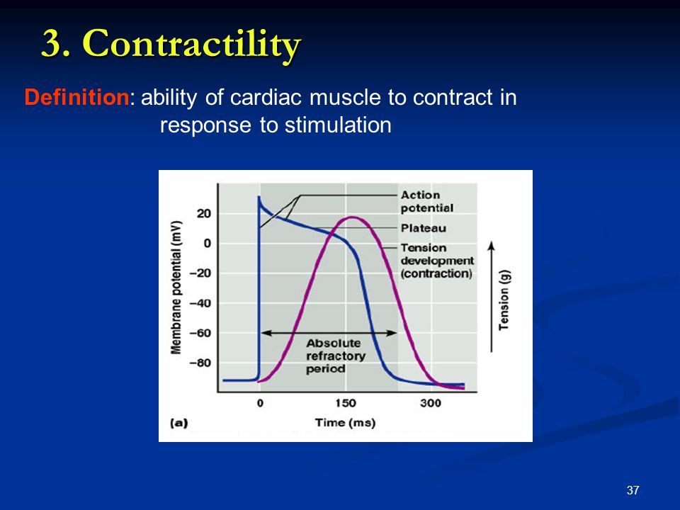 3. Contractility Definition: ability of cardiac muscle to contract in response to stimulation
