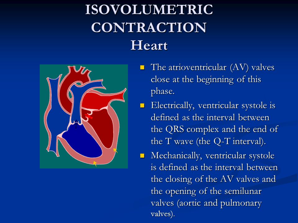 ISOVOLUMETRIC CONTRACTION Heart