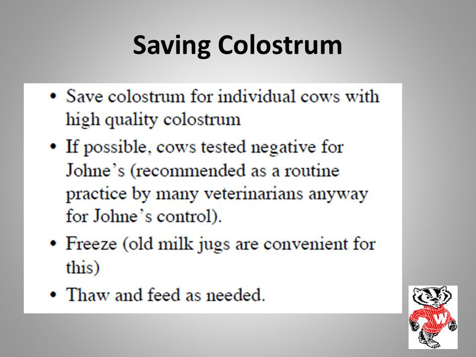 Saving Colostrum