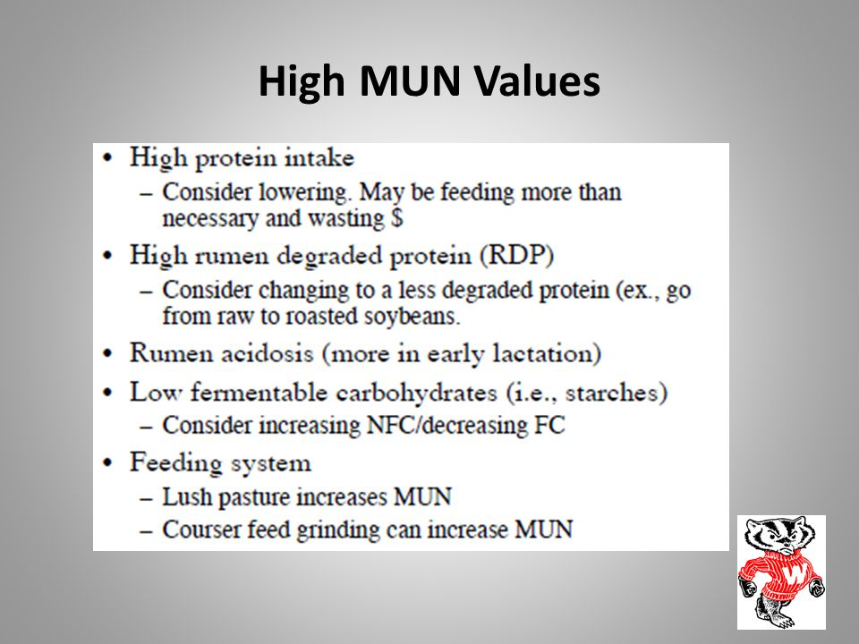 High MUN Values