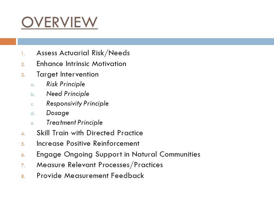 OVERVIEW Assess Actuarial Risk/Needs Enhance Intrinsic Motivation