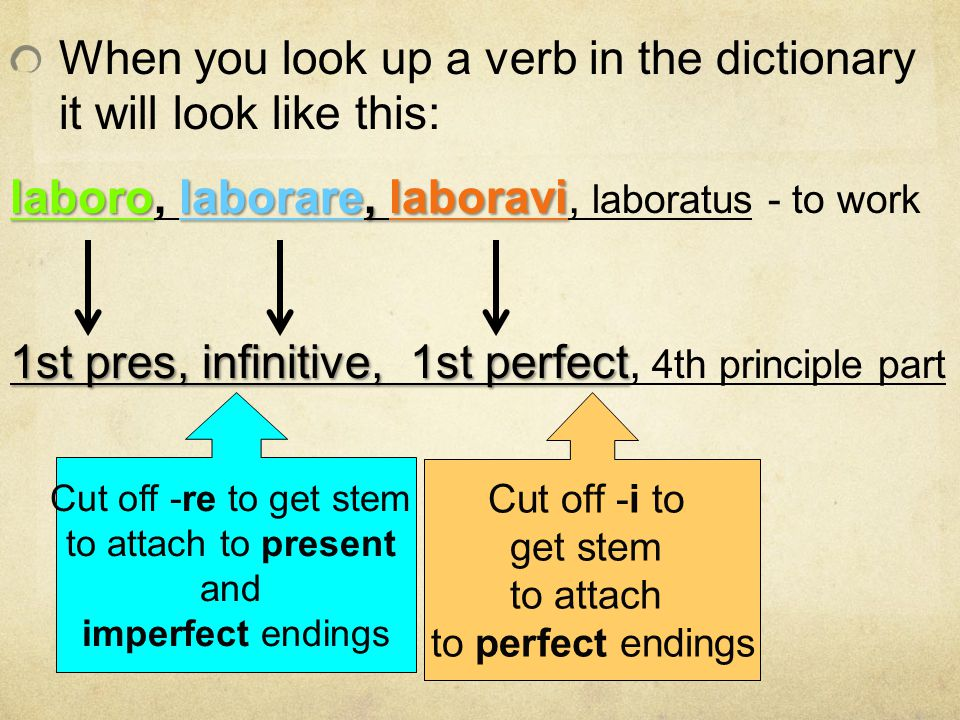 When you look up a verb in the dictionary it will look like this: