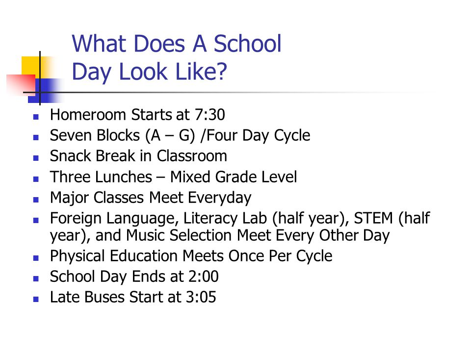 What Does A School Day Look Like